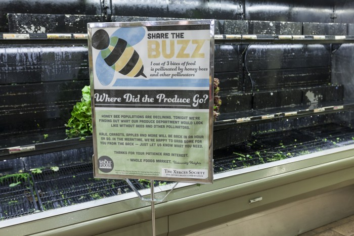 Whole-Foods-Bees-